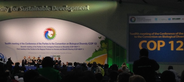Cbdcop121stday_2